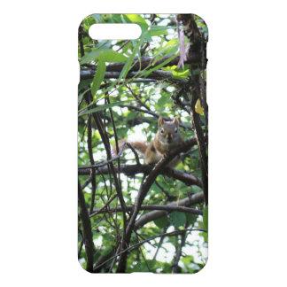 Squirrel in a tree iPhone 7 plus case