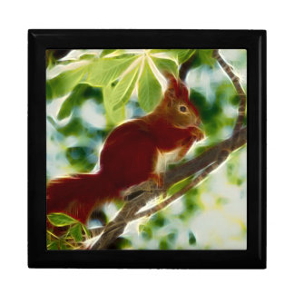 Squirrel In A Tree Keepsake Box