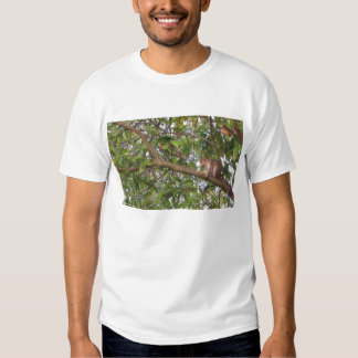 Squirrel in a tree T-shirt