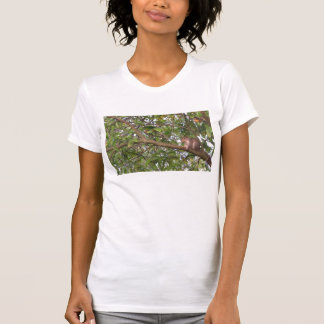 Squirrel in a Tree tank top