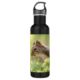 Squirrel in a Tree Water Bottle