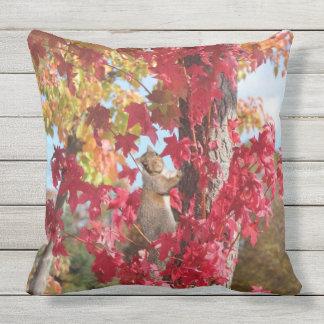 Squirrel in Autumn tree Outdoor Pillow