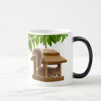 Squirrel in Bird Feeder Mug