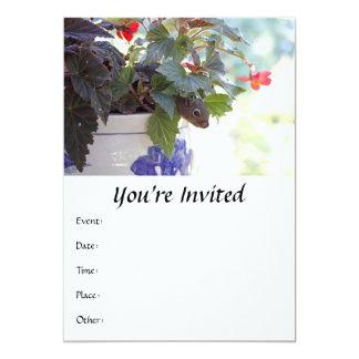 Squirrel in Flower Pot 5x7 Paper Invitation Card