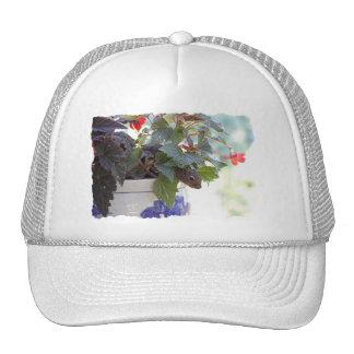 Squirrel in Flower Pot Mesh Hats