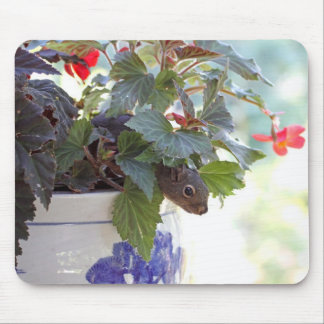 Squirrel in Flower Pot Mouse Pad