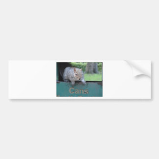 Squirrel in litter bin bumper sticker