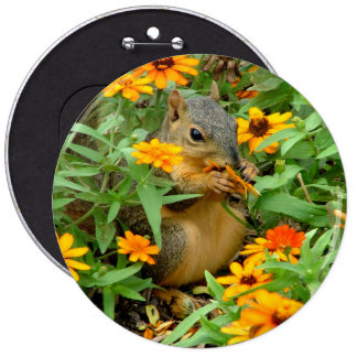 Squirrel In Marigolds (3774) Pinback Button