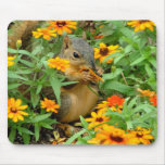 Squirrel In Marigolds (3774) Mouse Pads