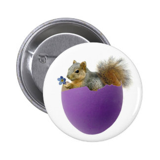 Squirrel in Purple Eggshell Magnet Pinback Button