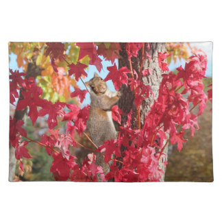 Squirrel in red autumn tree placemat