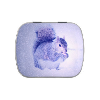 Squirrel in snow candy tins