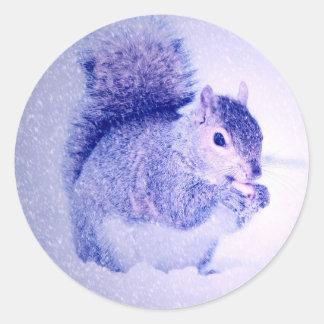 Squirrel in snow classic round sticker