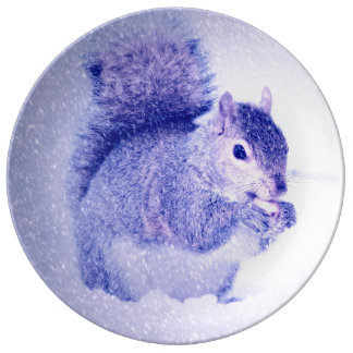 Squirrel in snow dinner plate