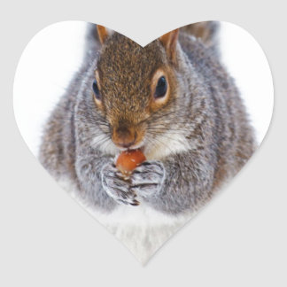 squirrel in snow enjlying sweet and peace heart sticker