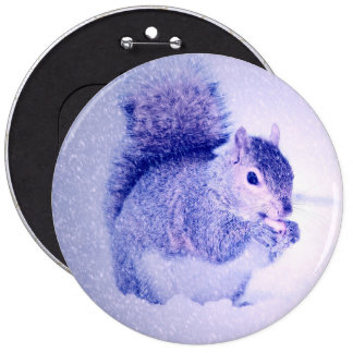 Squirrel in snow pinback button