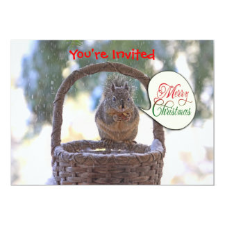 Squirrel in Snow Saying Merry Christmas Card