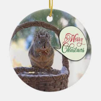 Squirrel in Snow Saying Merry Christmas Ornaments