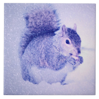 Squirrel in snow tile