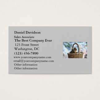 Squirrel in Snowy Basket in Winter Photo Business Card
