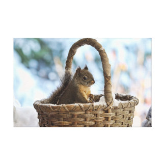 Squirrel in Snowy Basket in Winter Photo Canvas Print
