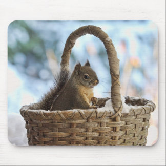 Squirrel in Snowy Basket in Winter Photo Mouse Pad