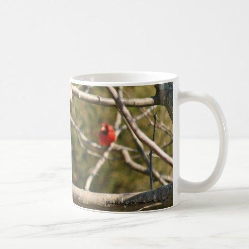 Squirrel in the Birdfeeder Coffee Mug Cup