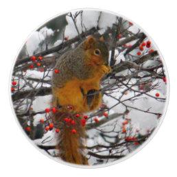 Squirrel in the Snow 6234 Ceramic Knob