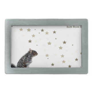 Squirrel in the snow belt buckles