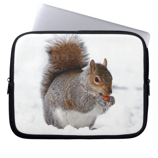 Squirrel in the Snow Computer Sleeves