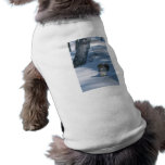 Squirrel in the Snow Dog Clothes