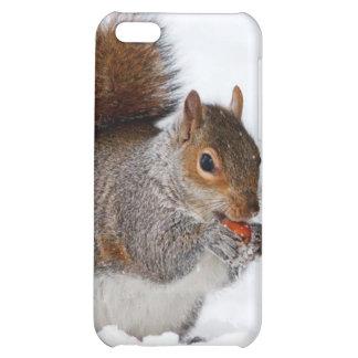 Squirrel in the snow iPhone 5C cases