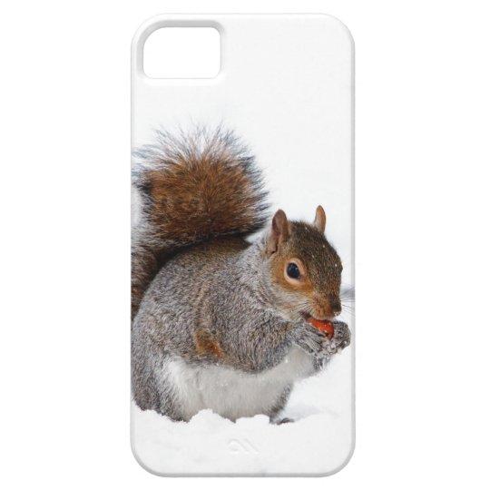 Squirrel in the Snow iPhone SE/5/5s Case