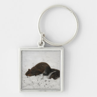 Squirrel In The Snow Key Chain