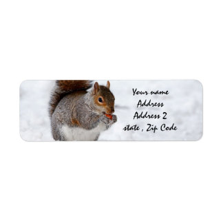 Squirrel in the snow label