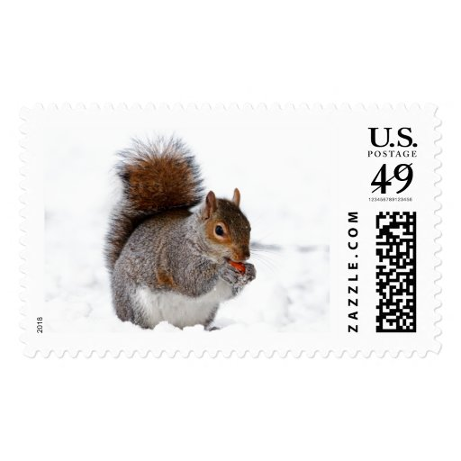 Squirrel in the Snow Postage Stamp