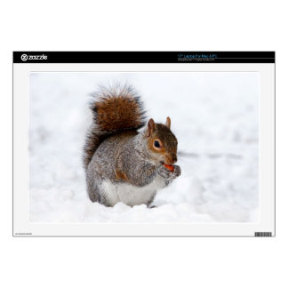 "Squirrel in the snow 17"" laptop decal"