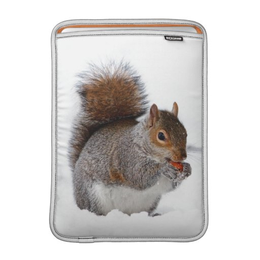 Squirrel in the Snow Sleeve For MacBook Air
