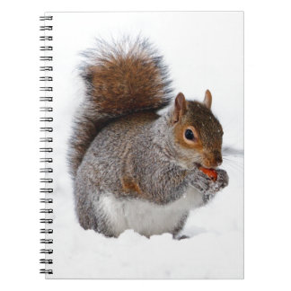 Squirrel in the Snow Spiral Note Books