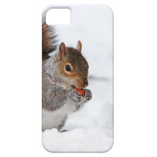 Squirrel in the Winter iPhone SE/5/5s Case