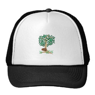 Squirrel In Tree Hat