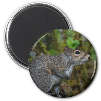 Squirrel In Tree Magnet
