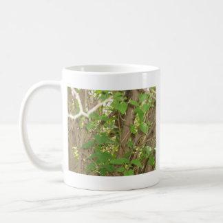 Squirrel in Tree Mug