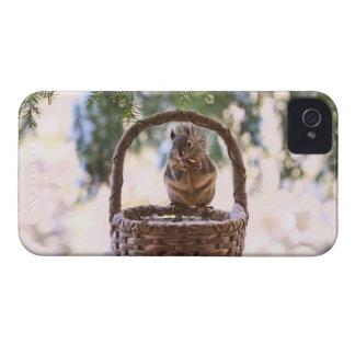 Squirrel in Winter Basket Case-Mate iPhone 4 Case