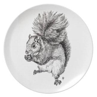 Squirrel Ink Illustration on Plate