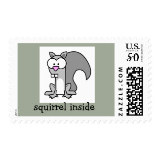 squirrel inside postage