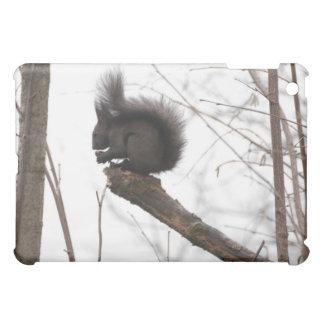 Squirrel iPad Mini Case
