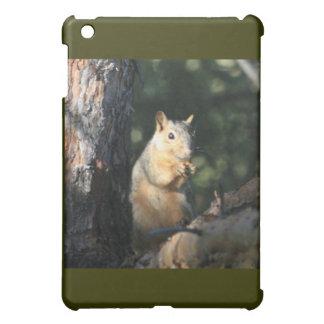 Squirrel iPad Mini Covers