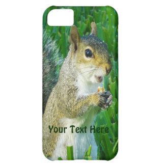 Squirrel iPhone 5C Case or ADD Your Photo and Text