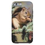 Squirrel iPhone 6 case